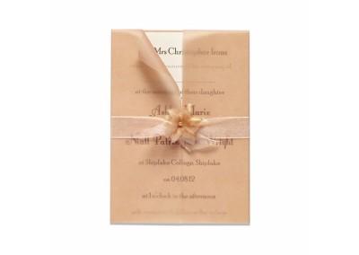Floral Blush Invitation Bundle