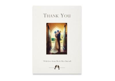 Lovebird Thank You